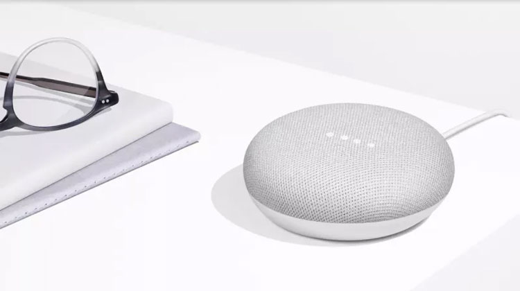 google home mini manual pdf